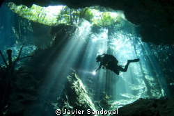 diver in cenote chacmool great dive!!! by Javier Sandoval 